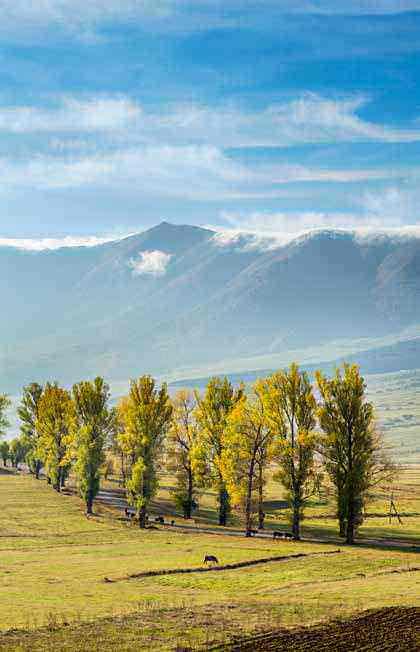 Un camino rural usado para la transhumancia en la provincia de Lorri, al norte de Armenia.