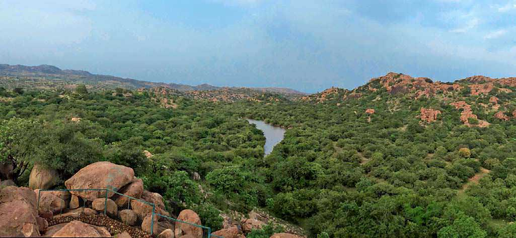 Scrub Jungle And Rocky Outcrop , the habitat of sloth bears.