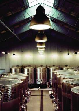Cabernet sauvignon grapes are fermented in new stainless-steel tanks, ensuring sterility.