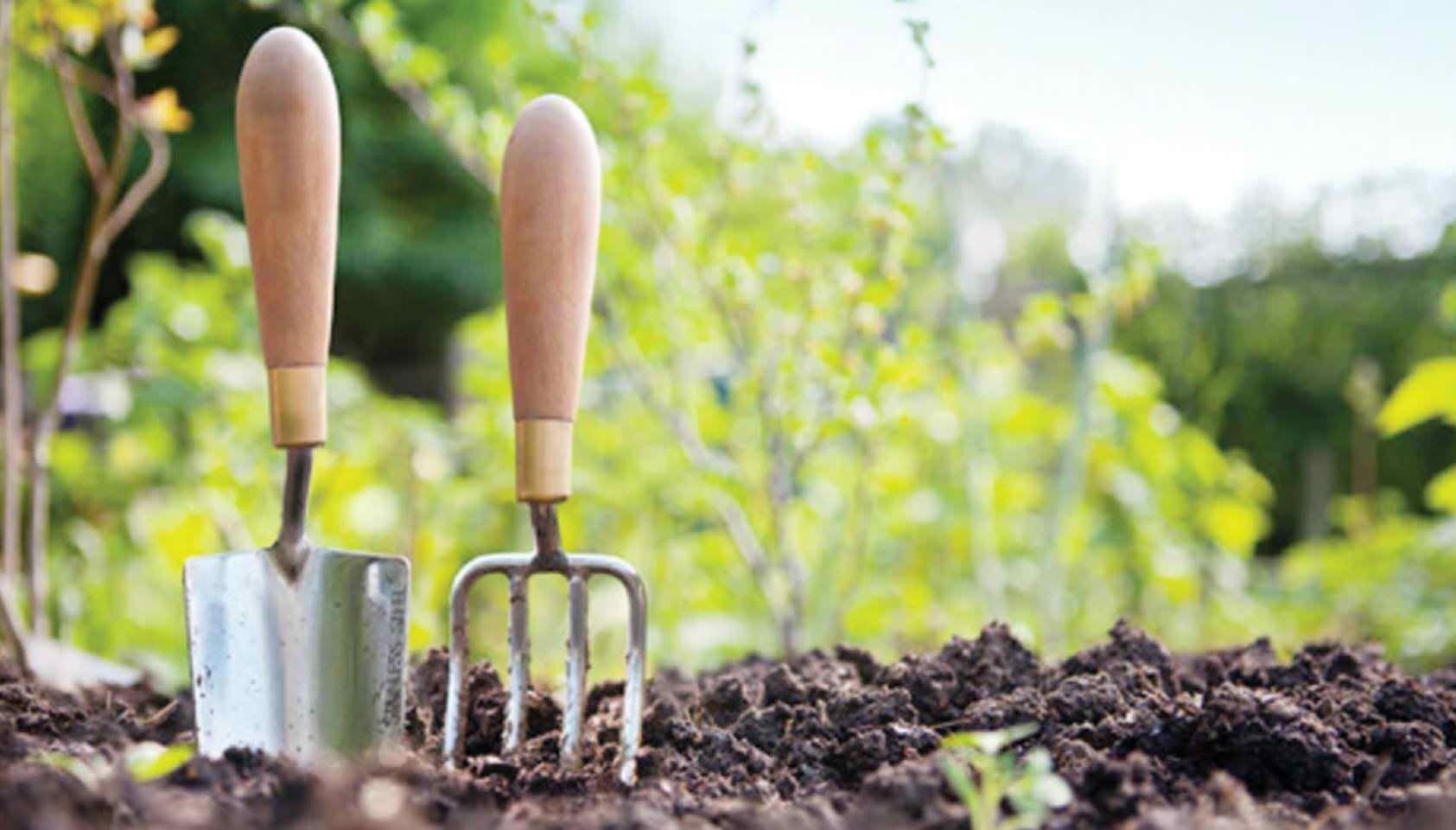 my hobbies essay gardening