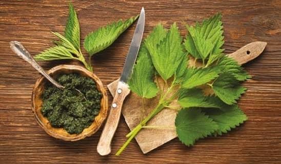 remedios herbales efectivos para el agrandamiento de la próstata