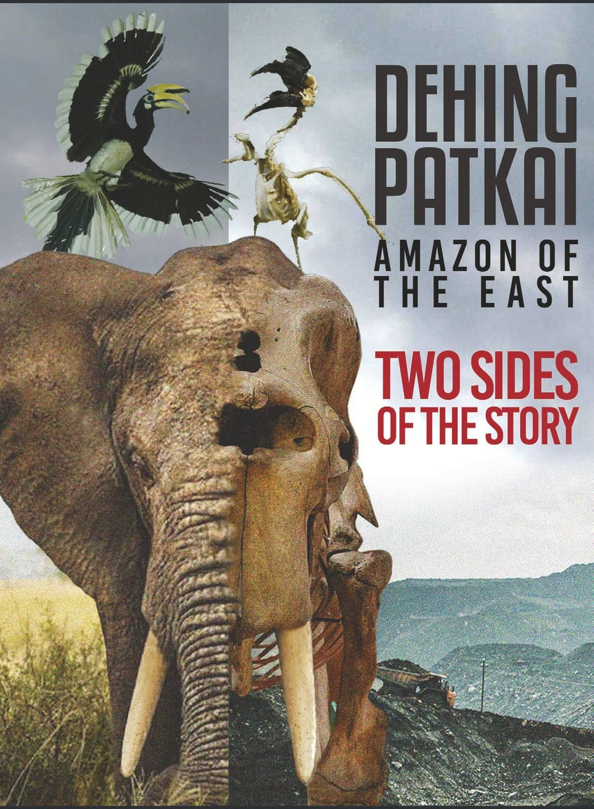 DEHING PATKAI AMAZON OF THE EAST