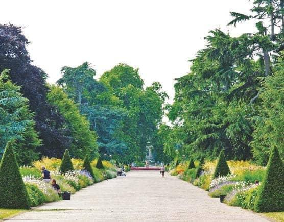 Plan Your Summer Garden