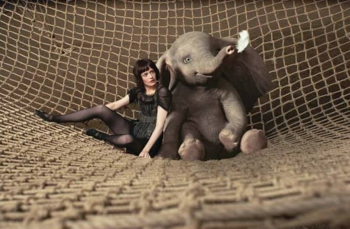 An Elephant Suffers, And You Will Too