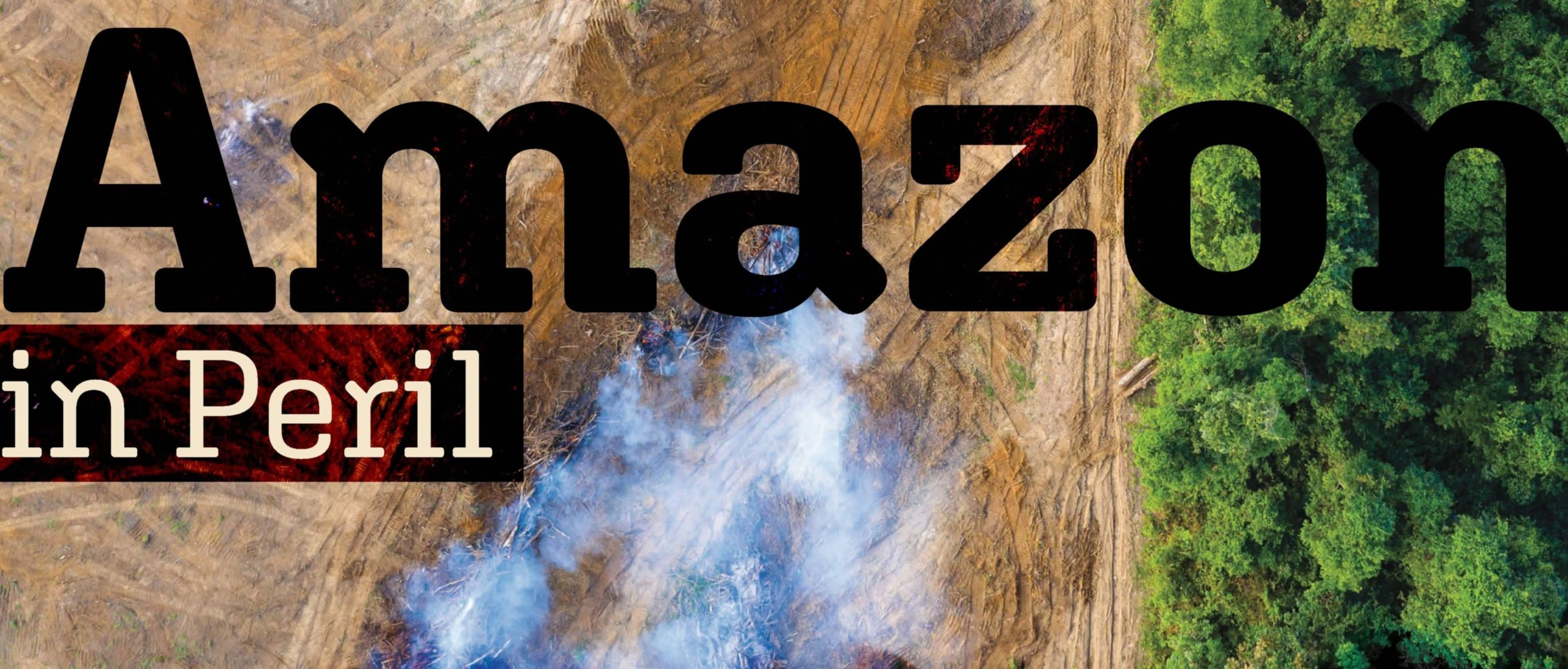 Amazon in Peril