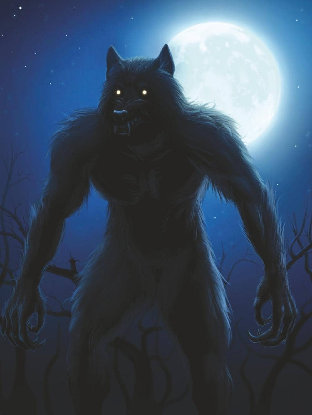 Werewolf Whereabouts