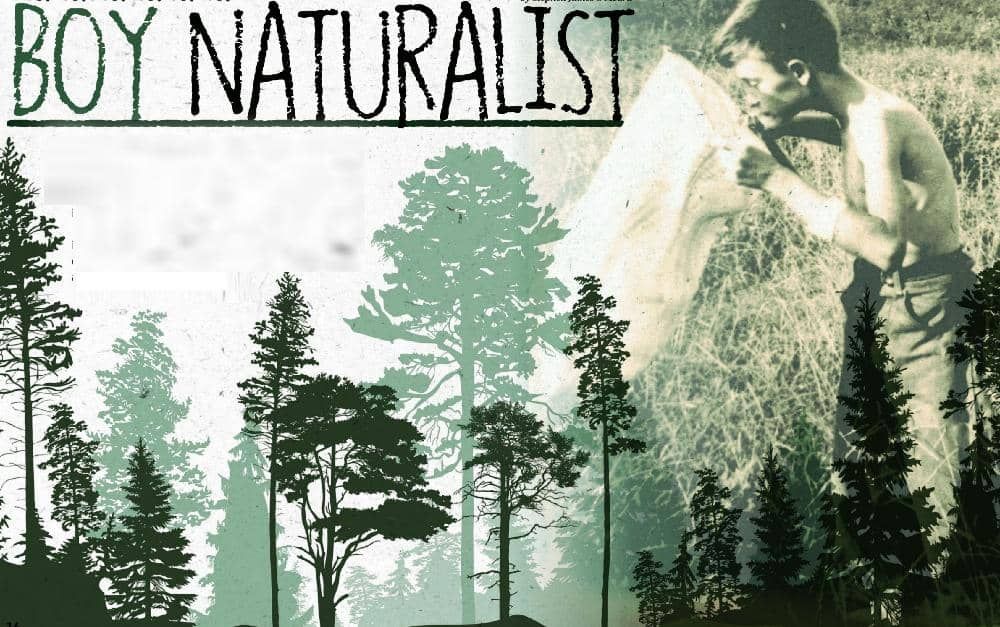 The true story of a young scientist: BOY NATURALIST