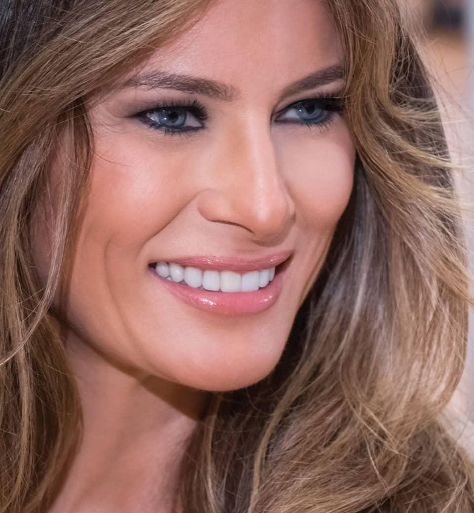 Enterprising Women Of The White House