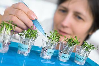 Skill Development Challenges Facing Food Analysis