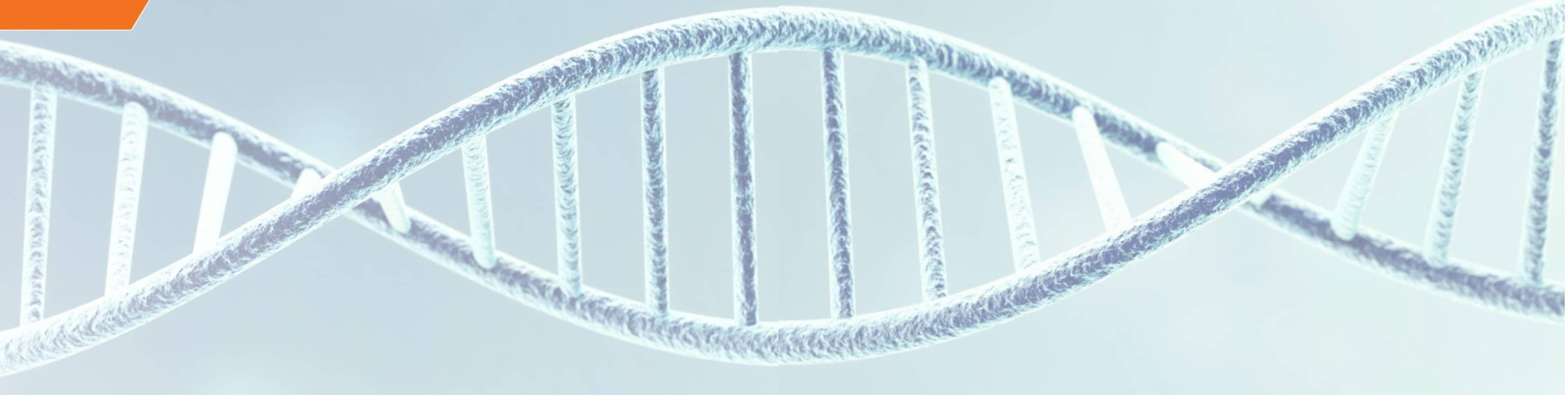 THE GENE Geme