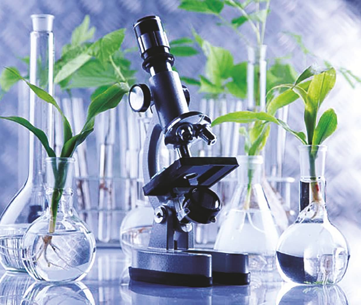 """""""The biotechnology industry in India is entering a new era of growth"""""""