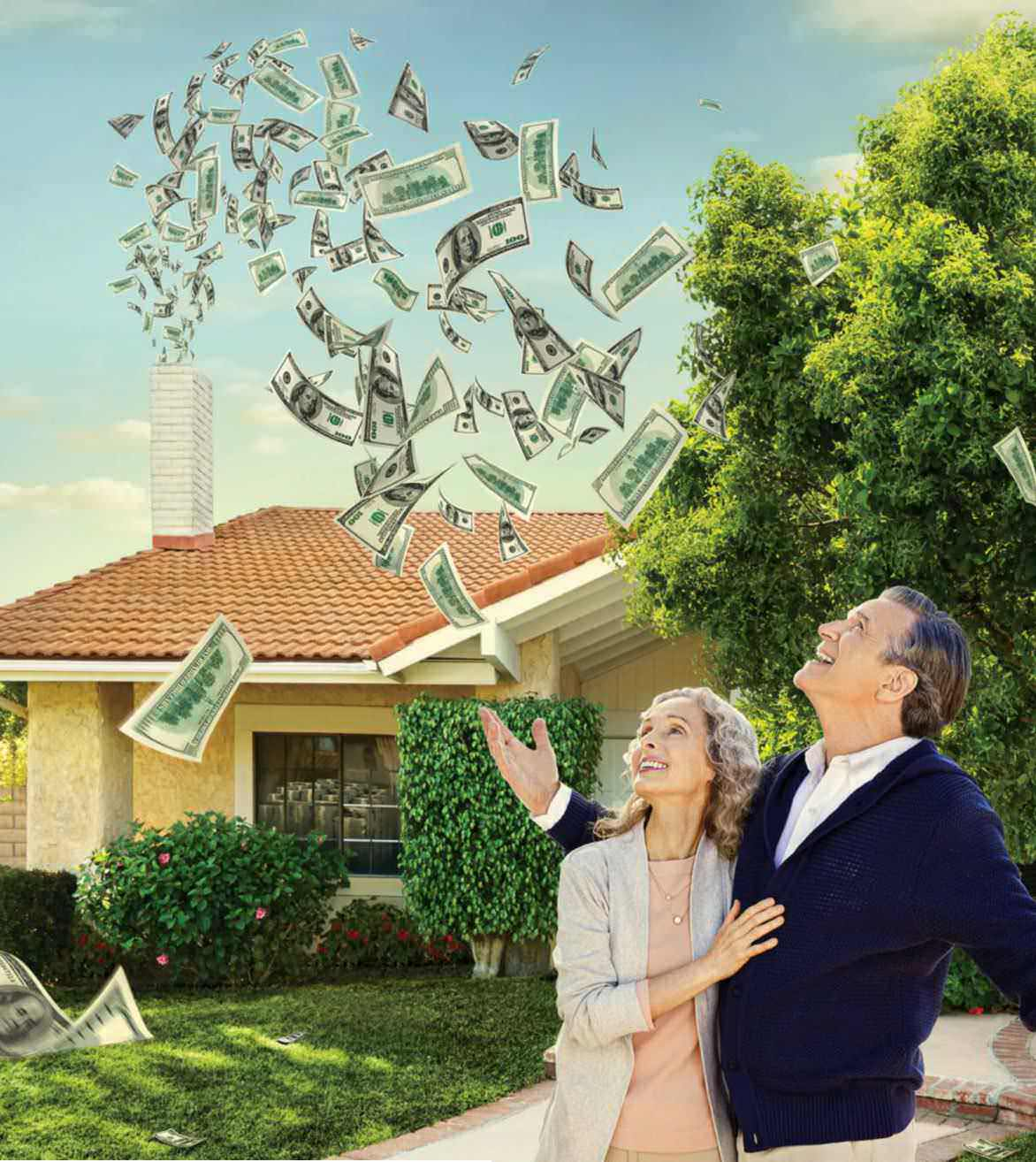 Retirement Mortgage Income Finance