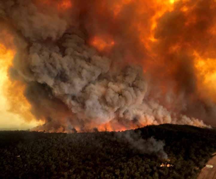 Take Five: The burning bush
