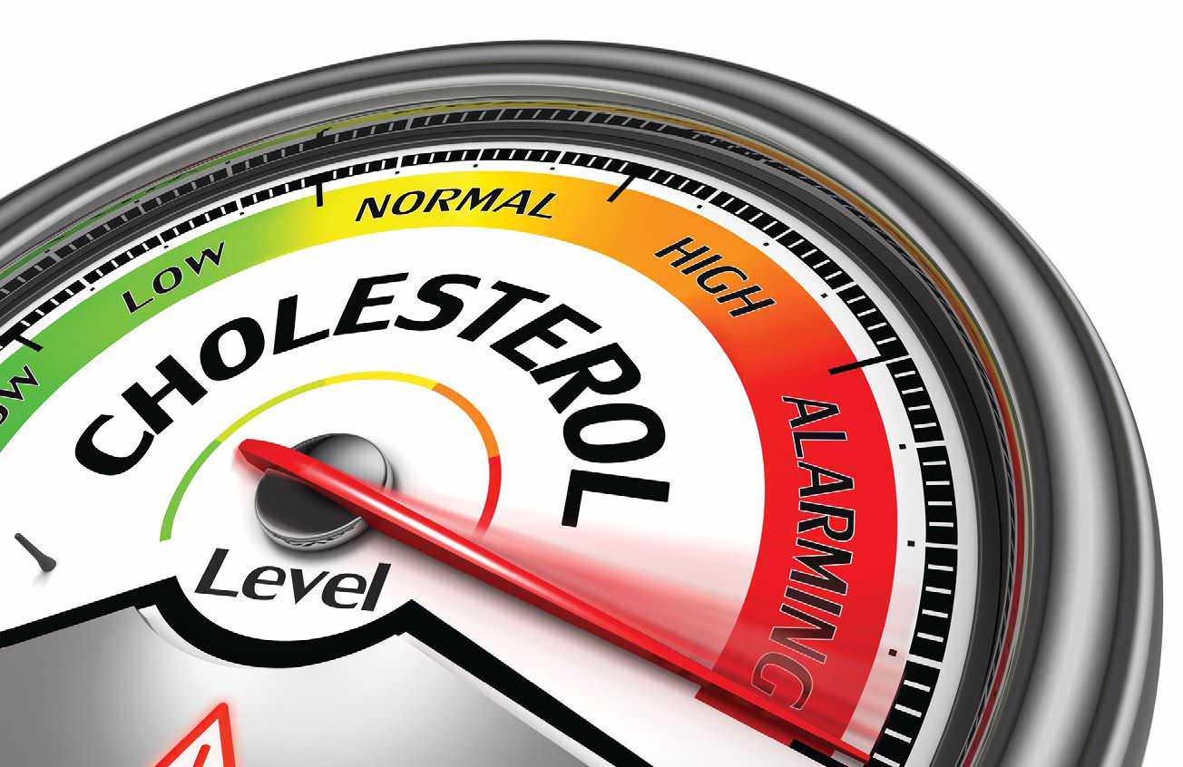how to raise hdl cholesterol