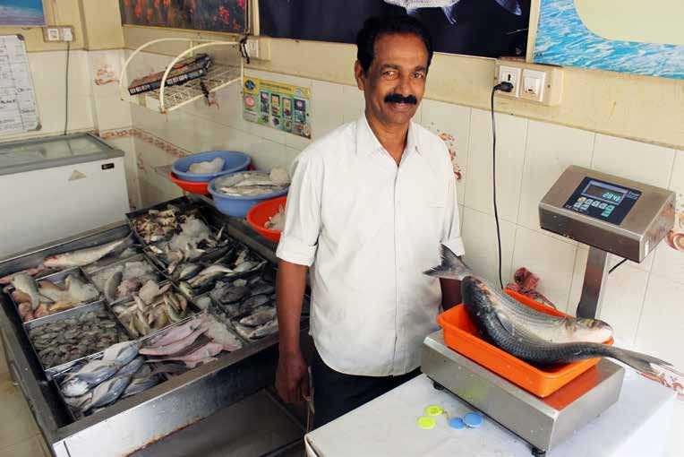 Fish Vends - No Longer A Fishy Tale