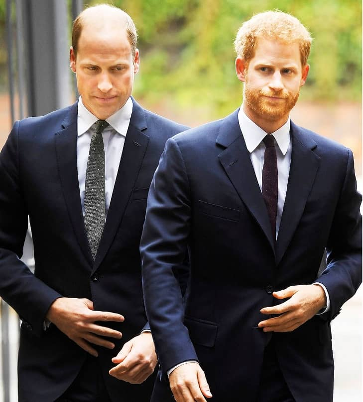 William & Harry The start Of Their Feud