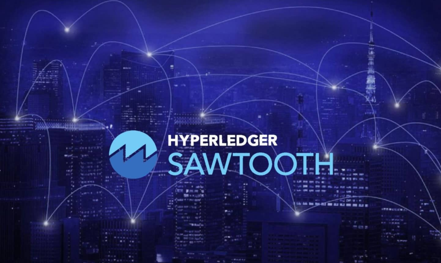 Hyperledger Sawtooth Architecture: An Introduction To The Validator Network