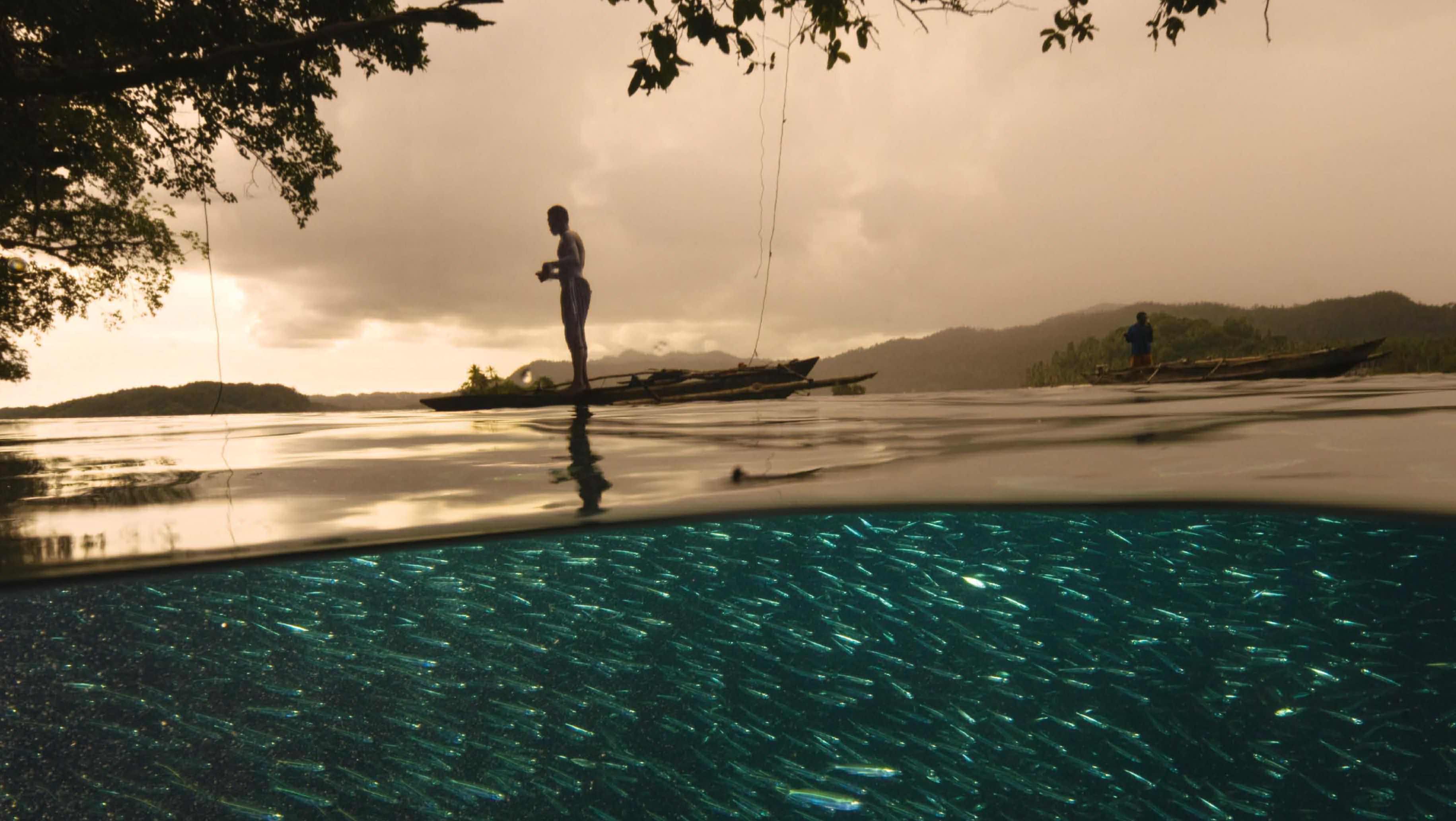 Raja Ampat Islands: A Diver's Paradise