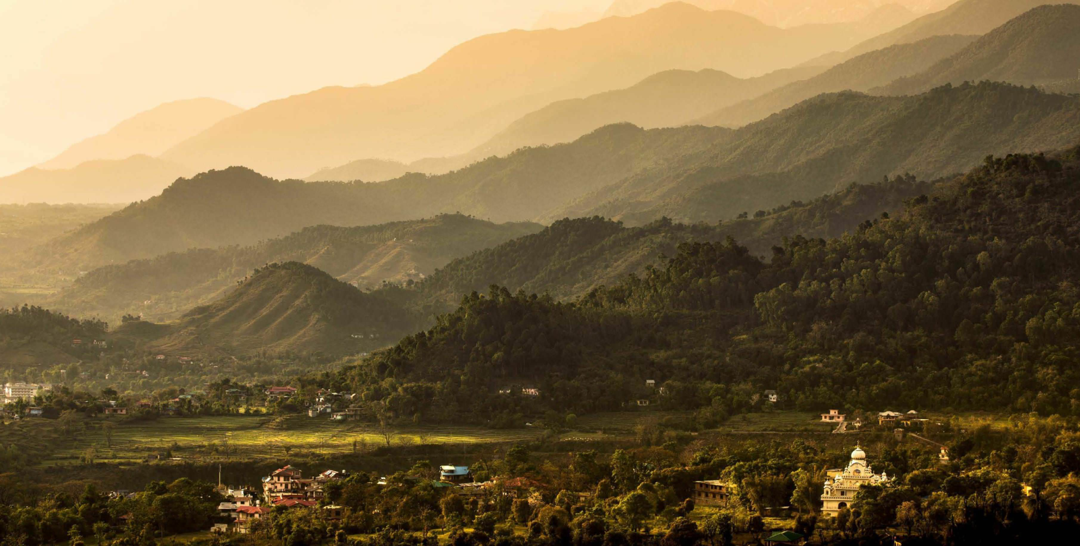 Being Local In Dharamsala