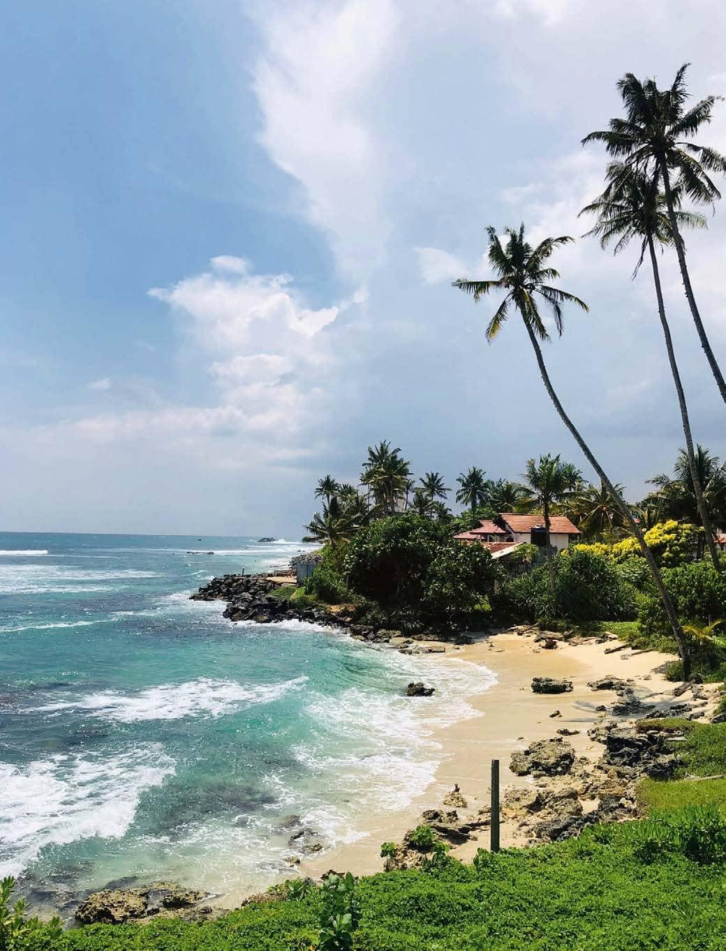 Where to Stay In Maldives, Sri Lanka, Gokarna, Rwanda, Lonavala And Nepal