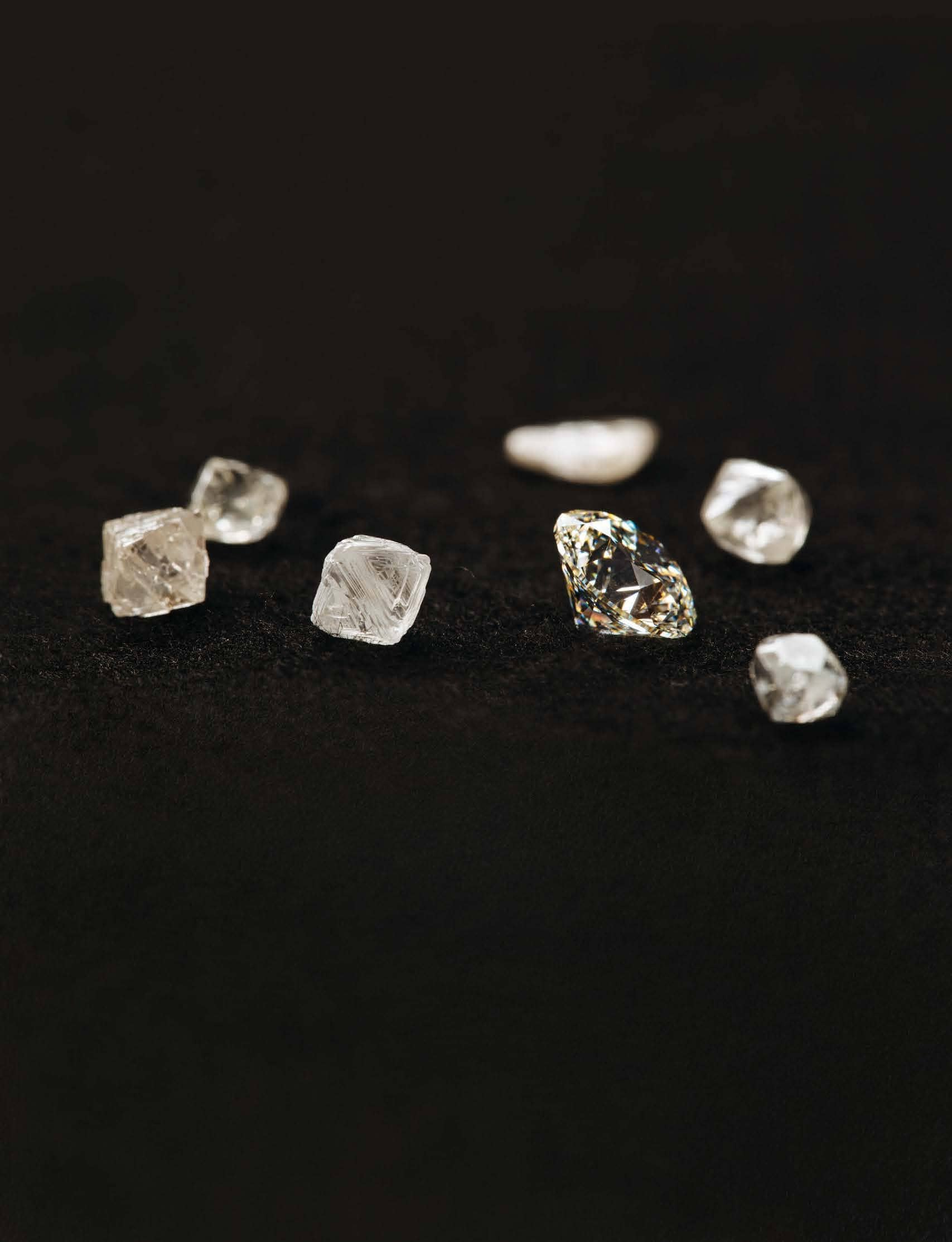 Natural Born Sparkle Like A Diamond