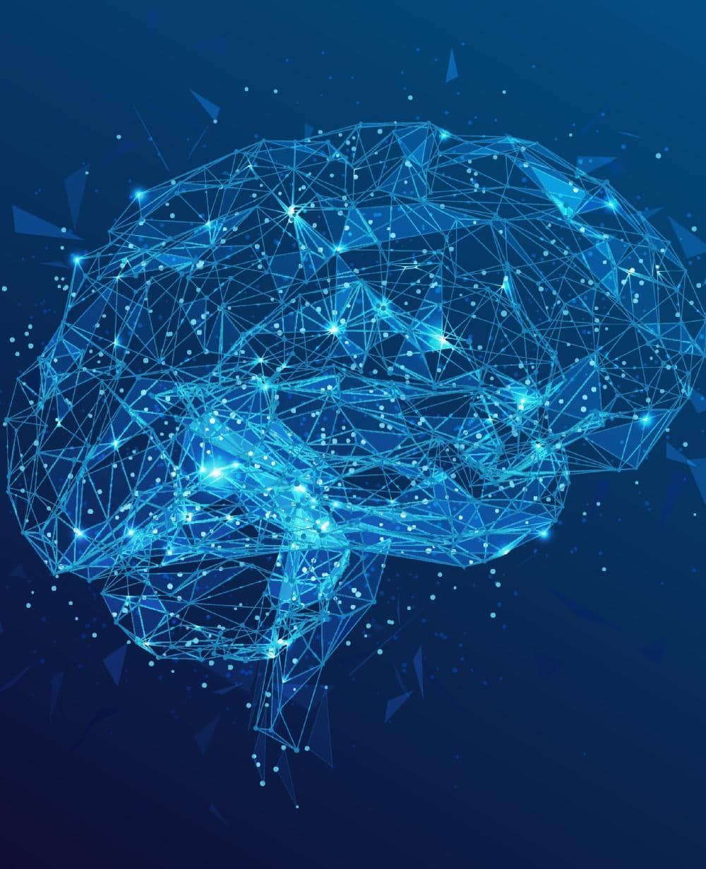 WILL WE EVER BE ABLE TO UPLOAD OUR BRAINS?