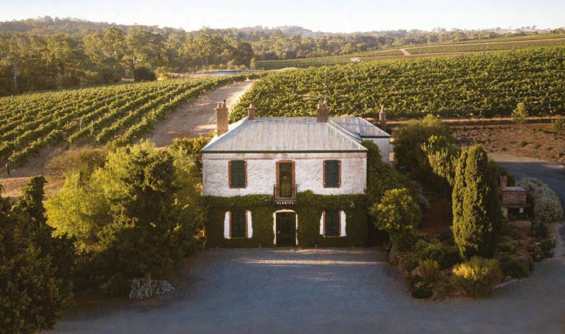 The First Families Of Wine: Henschke
