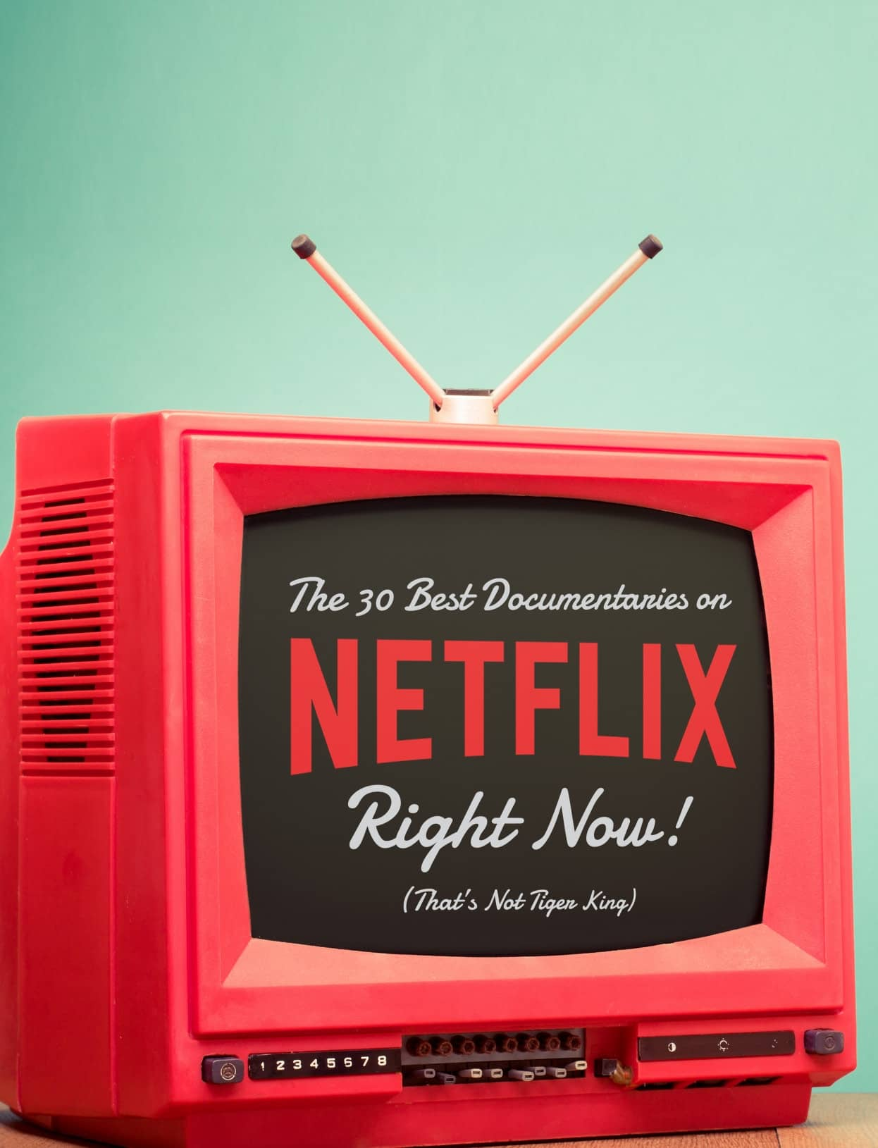 The 30 Best Documentaries on NETFLIX Right Now! (That's Not Tiger King)