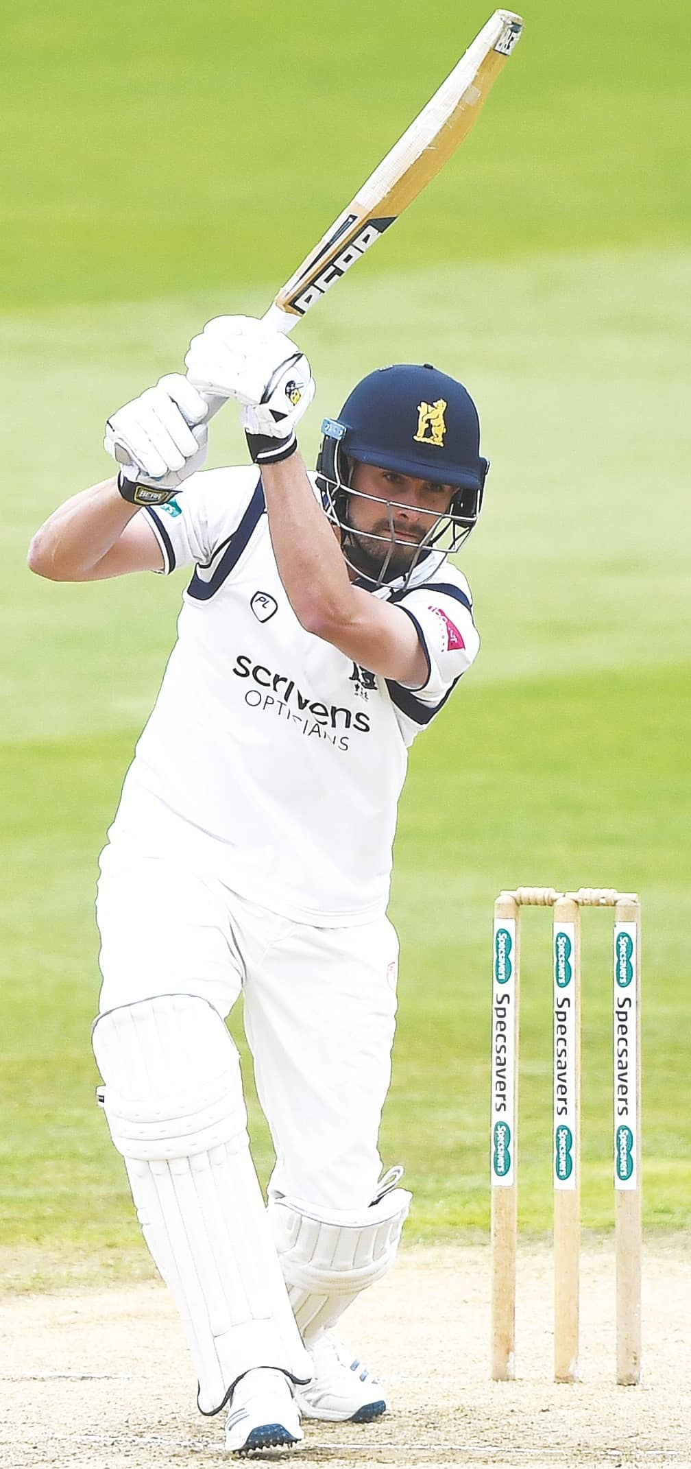 Bears Aim To Stop Essex And Boost Survival Bid