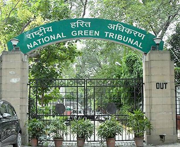 Clear Floodplain By March 2020, NGT Tells Agra Body