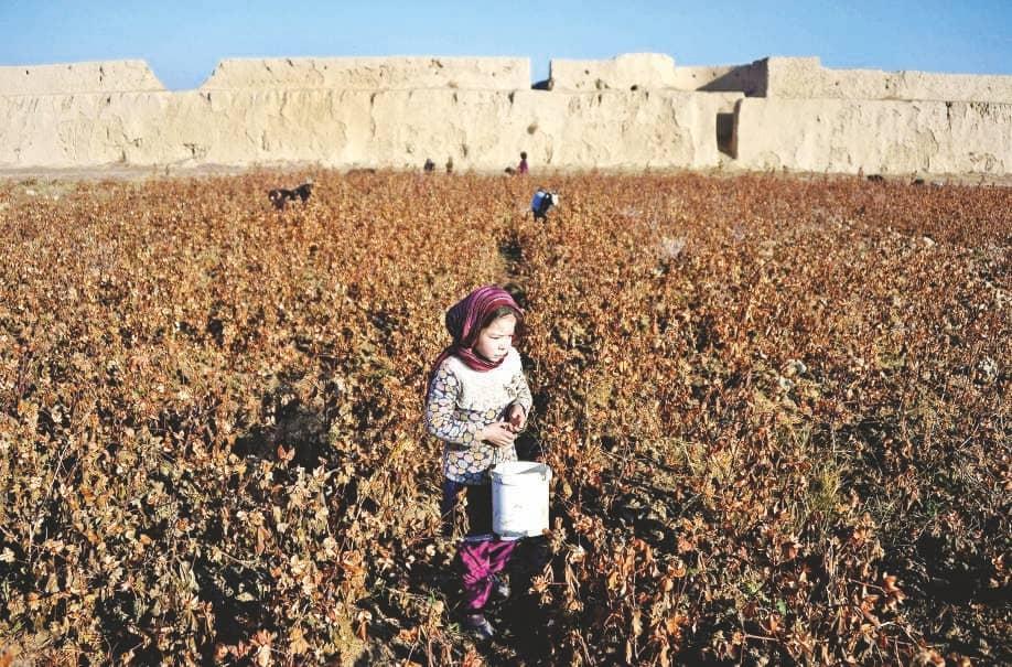 COVID-19 to undo decades of progress on child labour