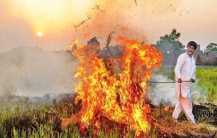No Relief, Farmers Will Burn Stubble!