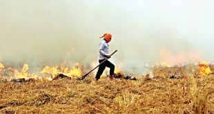 CM Blames Stubble Burning For Spike In Pollution Levels