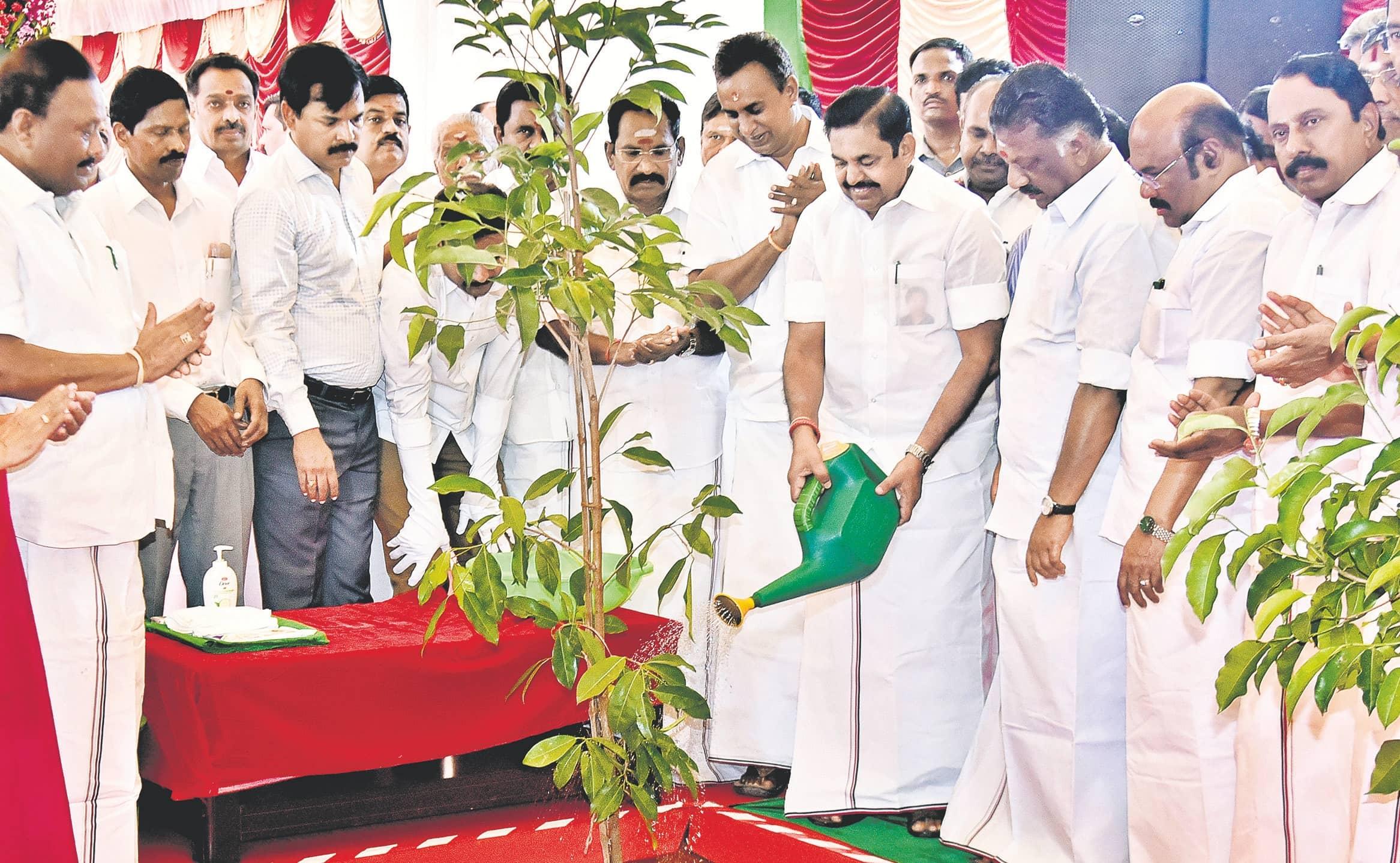 Plantation Drive, Girl Protection Mark Jaya's Birth Anniversary