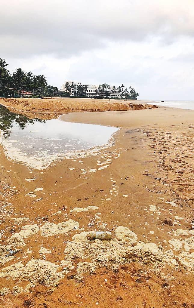 Beach nourishment threats Sri Lanka's unique marine assets
