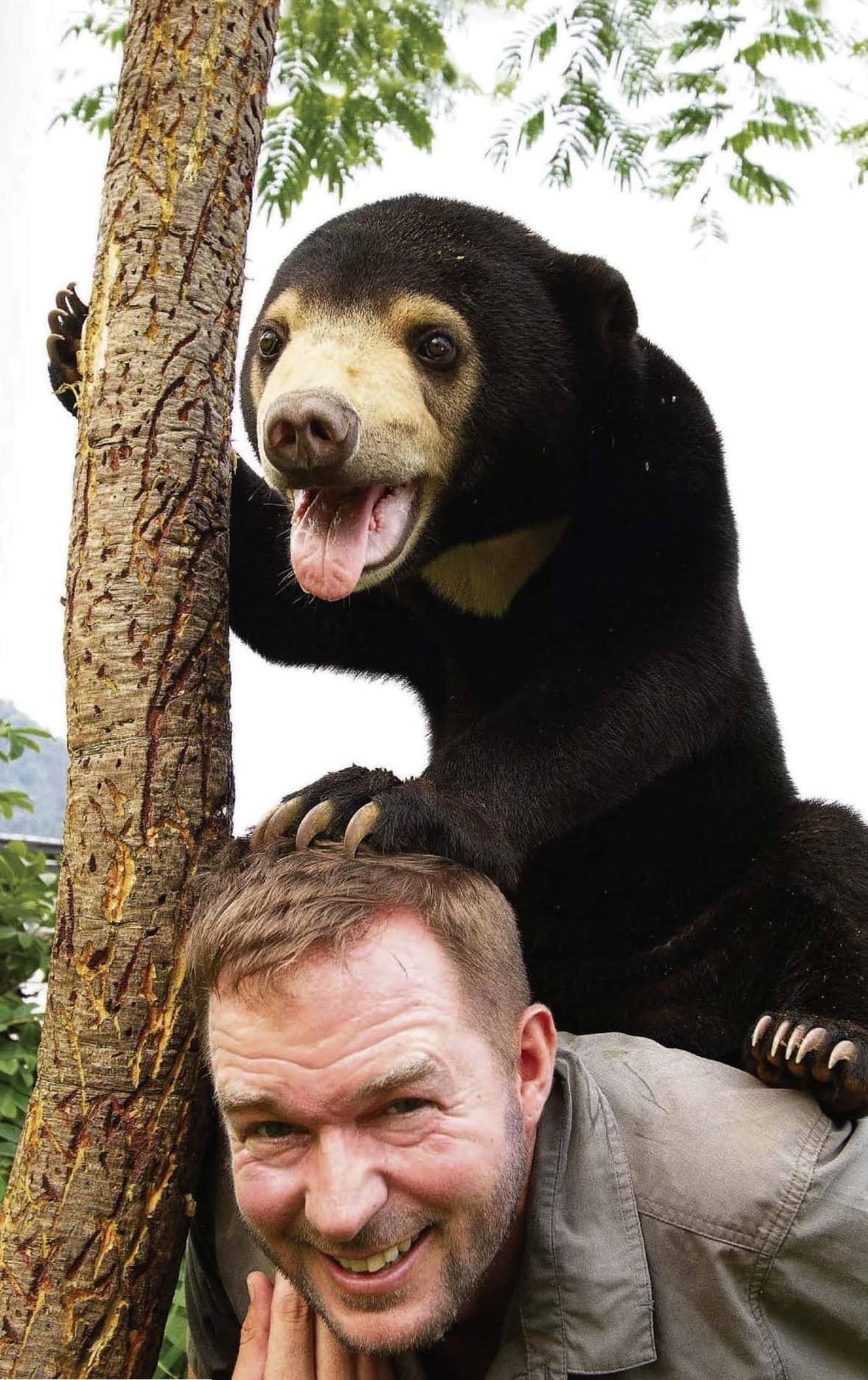 The bear care bunch