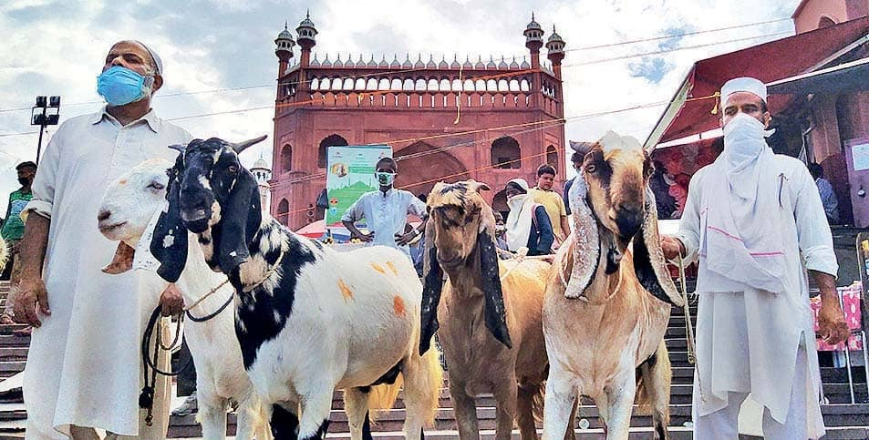 Fewer Goats, Dampened Gaiety This Eid