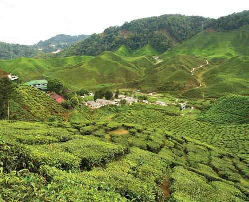 Travel Secrets: Hidden Malaysia