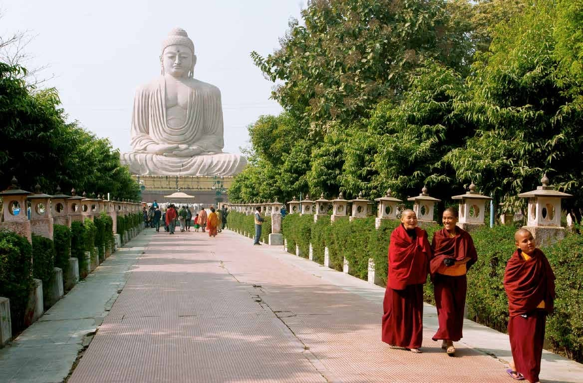 Shunyata Under The Bodhi's shade