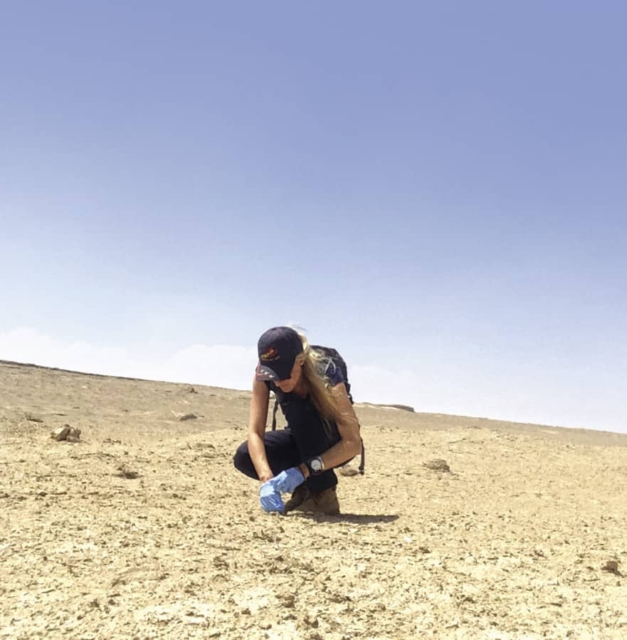 Reaching for Mars