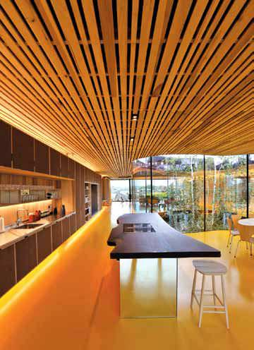 The Wonder Wood Cross Laminated Timber Clt
