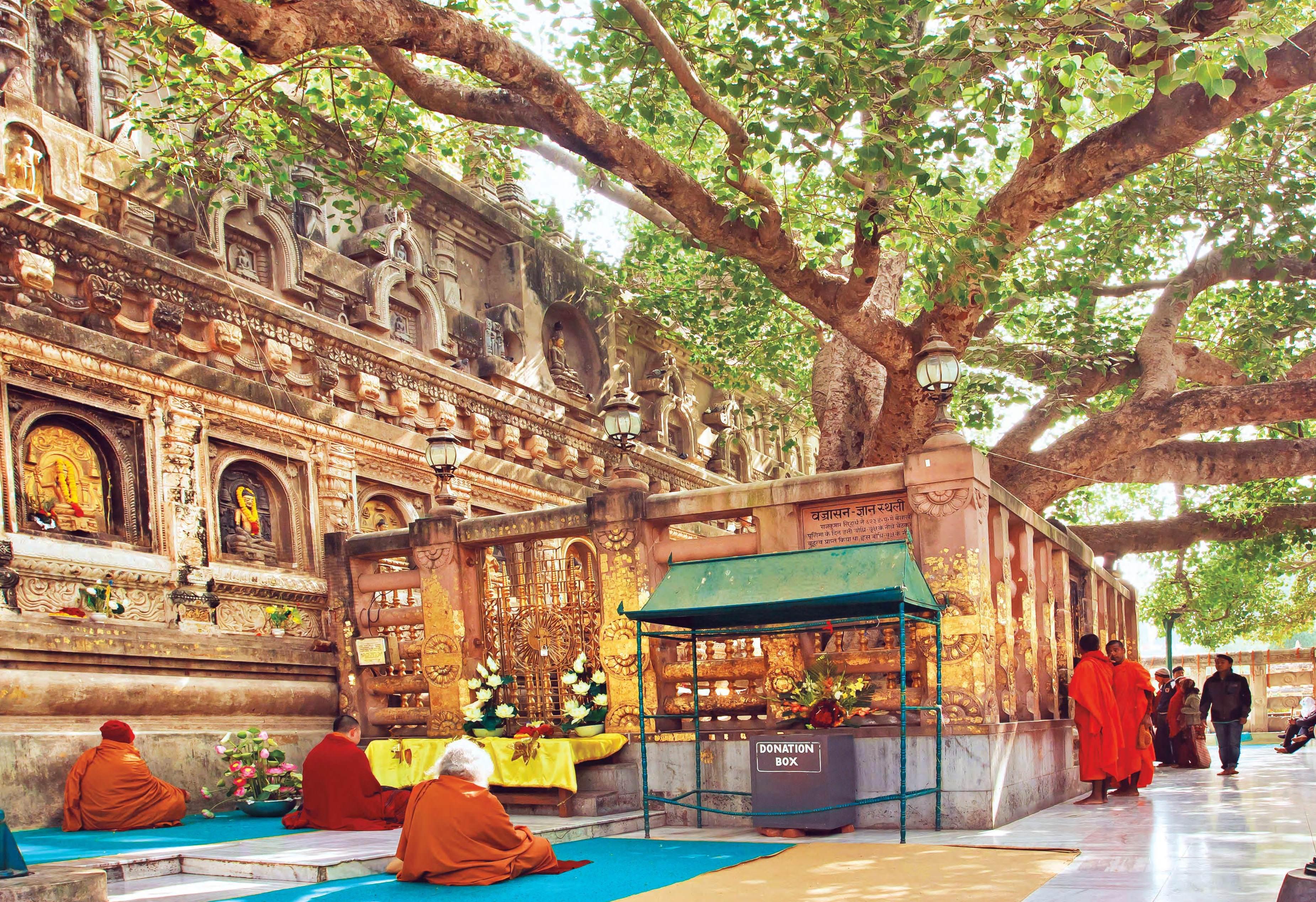 Following Buddha's Footprints