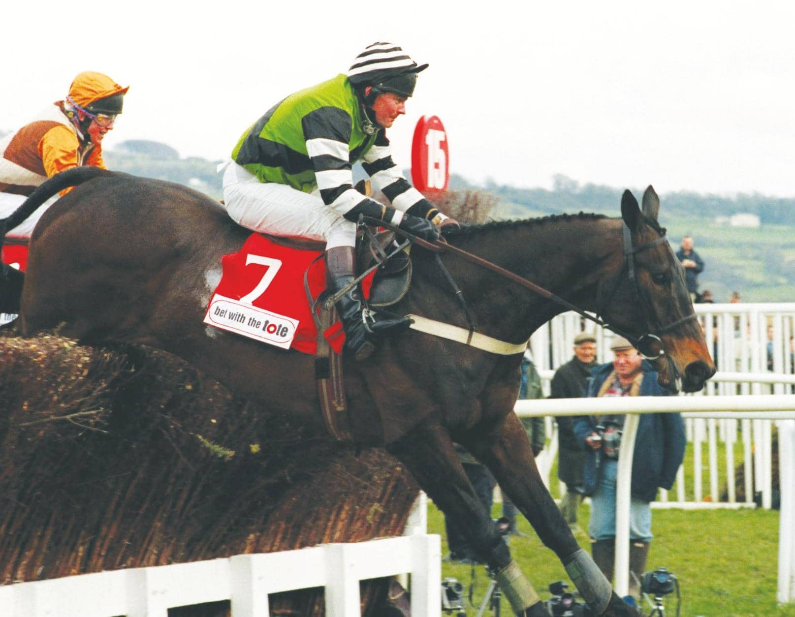 FAMILY PET WHO WON GOLD CUP