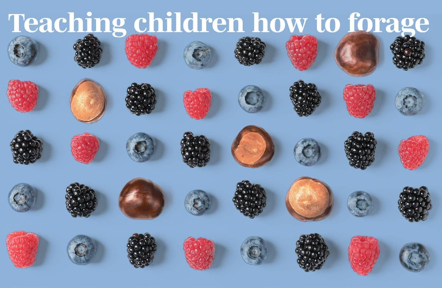 Teaching Children How To Forage