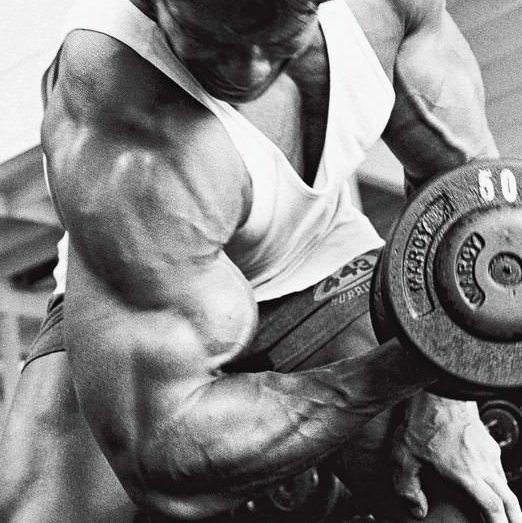 Arnold's Best Damn Arm Workout, Period