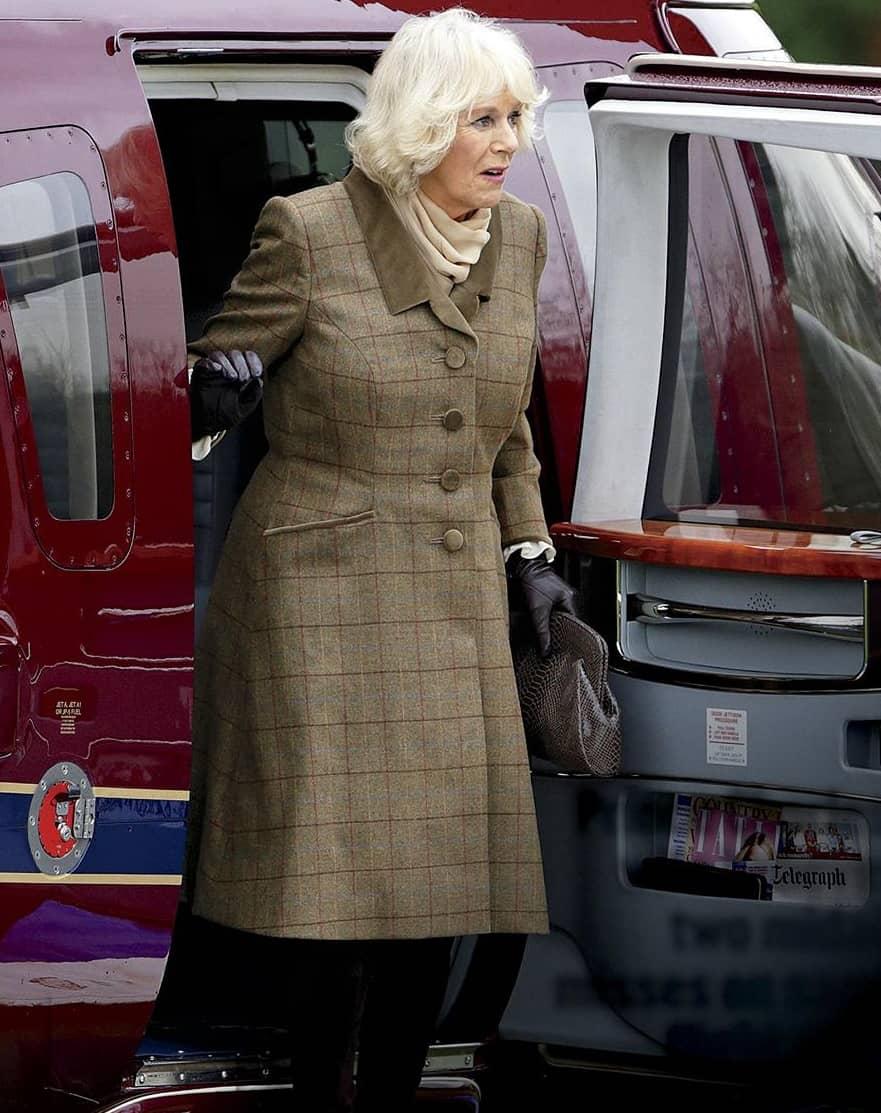 Camilla Assassination Terror!