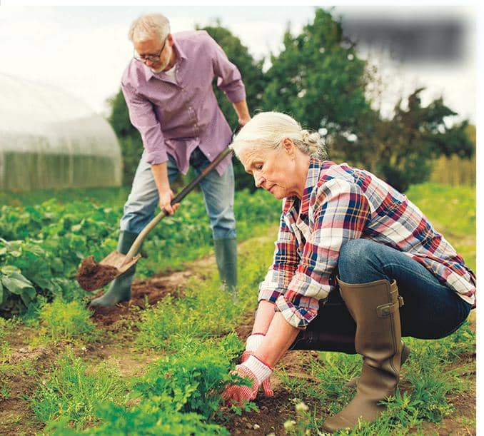 DIG THIS: GARDENING CAN BURY THE BLUES!
