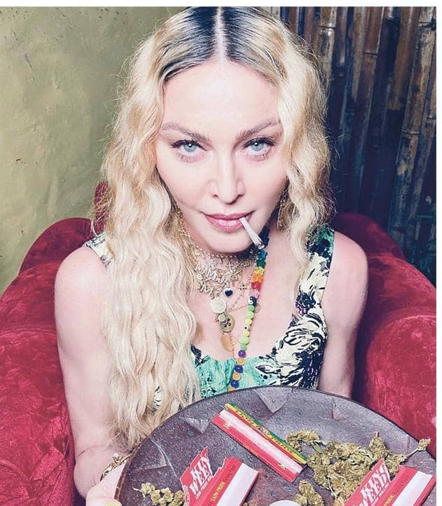 Gonzo Madonna Goes To Pot!