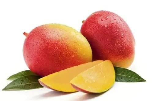 Mango - Eat and Treat