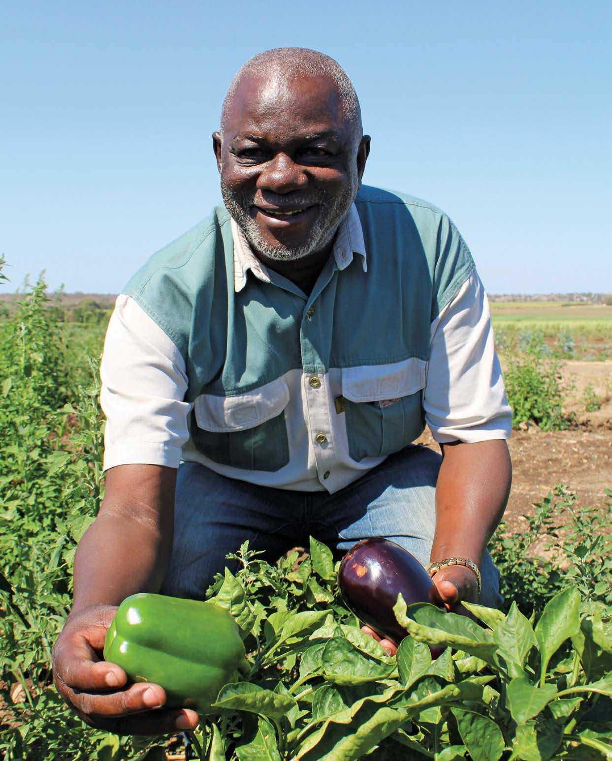 Rewards Elude Farmer Despite Hard Work